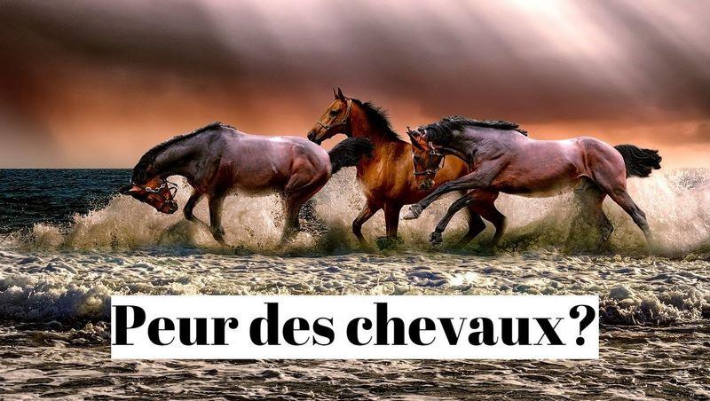 Comment vaincre la peur des chevaux?